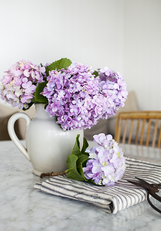 purple, ticking stripe, fresh flowers, hydrangeas