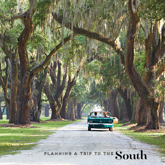 A Trip To The South