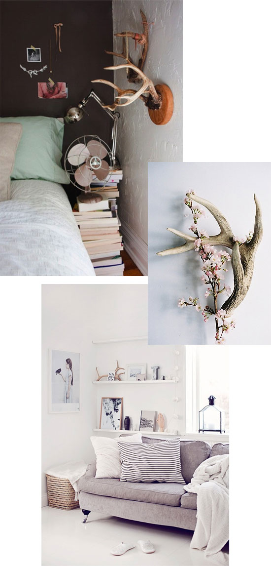 Decorating with antlers | At Home in Love