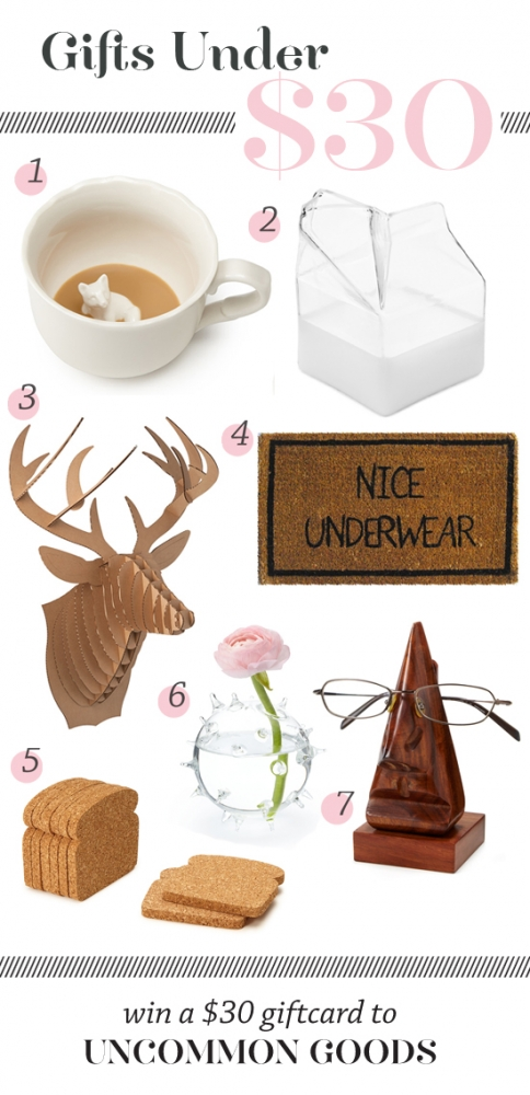 Gifts under $30--and a giveaway!