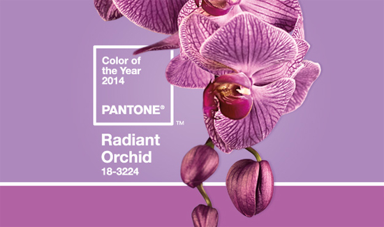 Pantone's Color of the Year for 2014: Radiant Orchid
