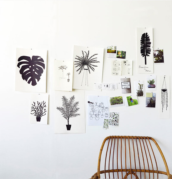 Black and white plant art