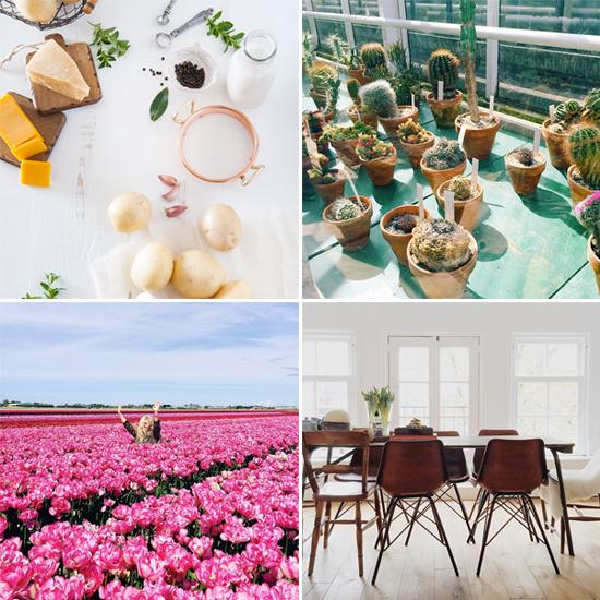 Instagram accounts to follow // @designlovefest
