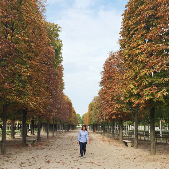 Fall colors at the Jardin des Tuilieries