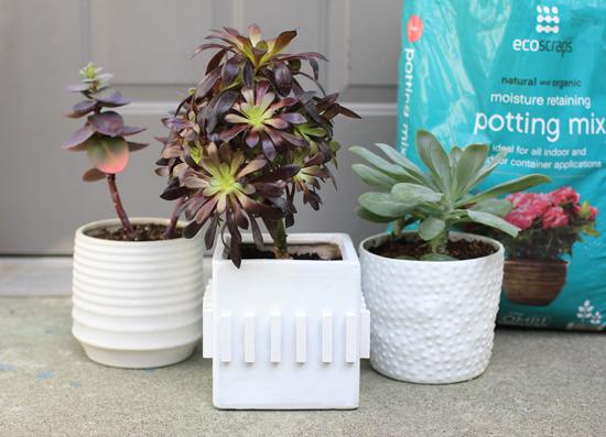 DIY textured planter