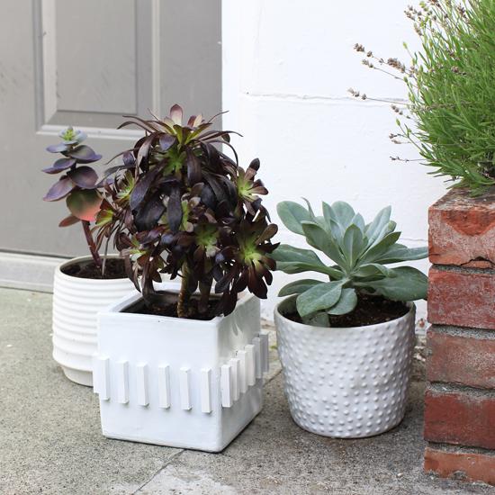 Textured planter pots