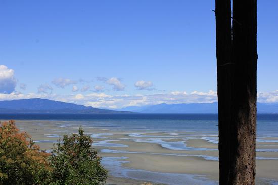 Trip recap: Vancouver Island babymoon