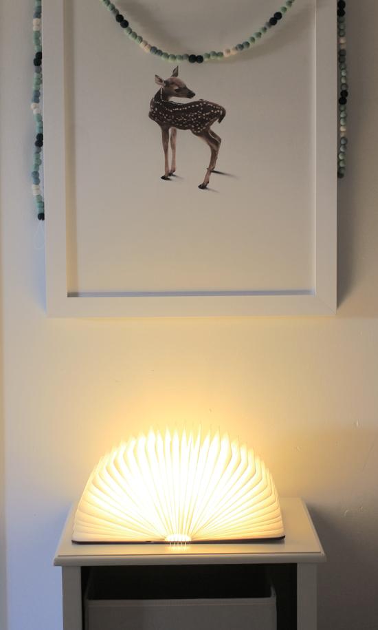 Cool book lamp