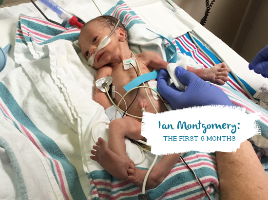 Ian Montgomery: the first 6 months