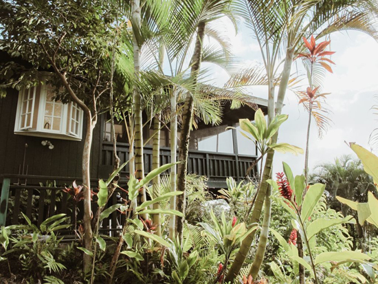 Best vacation rentals in Hawaii: this minimal jungle cottage in Kauai